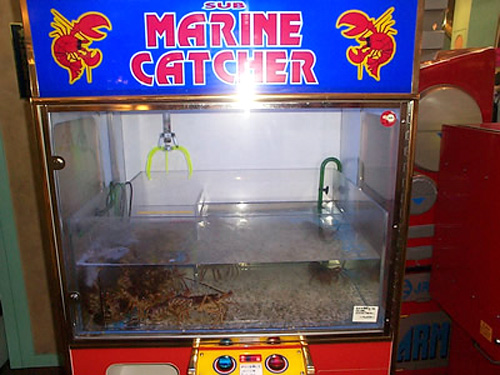 Sub_marine_catcher